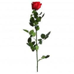 Rose Standard Stabilisée Rouge 60cm